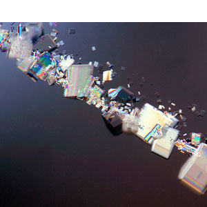 Dr. Gary Greenberg: sugar crystallizing